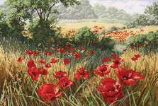 Click for more details of A Host of Poppies (cross-stitch) by maia