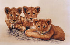 Click for more details of A Mother's Pride (watercolour on paper) by Linda Bloomfield