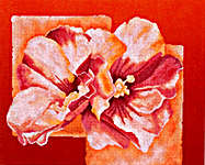 Click for more details of Abstract with Pink Chinese Rose (cross-stitch kit) by Lanarte