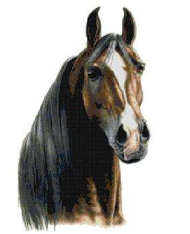 Click for more details of Arabian (cross-stitch pattern) by The Golden Hoop
