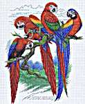 Click for more details of Bird Park & Macaws (cross stitch) by Pinn Stitch