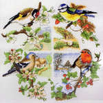 Click for more details of Birds and Seasons (cross-stitch kit) by Anchor