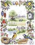 Click for more details of Birds Sampler (cross stitch) by Anchor