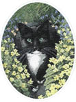 Click for more details of Black and White Cat (cross stitch) by John Stubbs