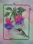 Click for more details of Black-chinned Hummingbird (cross stitch) by Crossed Wing Collection