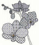 Click for more details of Blackwork Orchid (blackwork) by Bothy Threads