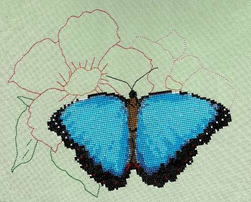 Click for more details of Blue Morpho Butterfly (cross stitch) by Anne Peden