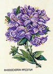 Click for more details of Blue Rhododendron (cross stitch) by Eva Rosenstand