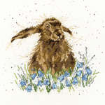 Click for more details of Bright Eyes (cross stitch) by Bothy Threads