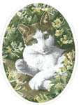 Click for more details of Brown and White Cat (cross-stitch) by John Stubbs