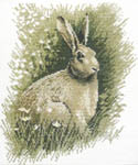Click for more details of Brown Hare (cross stitch) by John Stubbs