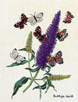 Click for more details of Buddleia - The Butterfly Bush (cross-stitch kit) by Eva Rosenstand