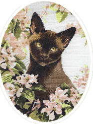 Click for more details of Burmese Cat (cross-stitch kit) by John Stubbs