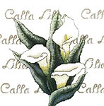 Click for more details of Calla Lilies (cross stitch) by Bobbie G. Designs