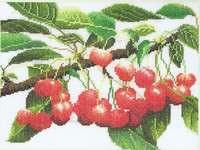 Click for more details of Cherry Branch (cross stitch) by Thea Gouverneur