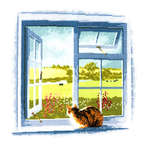 Click for more details of Cottage Window (cross stitch) by John Clayton