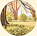 Click for more details of Daffodil Wood (cross-stitch) by John Clayton