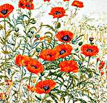 Click for more details of Field Poppies (cross-stitch kit) by Thea Gouverneur
