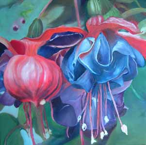 Click for more details of Fuschia (oil on canvas) by Shirley Rothwell