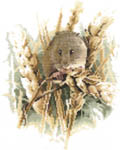 Click for more details of Harvest Mouse (cross-stitch kit) by John Stubbs
