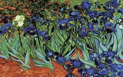 Click for more details of Irises after Vincent Van Gogh (tapestry) by Grafitec