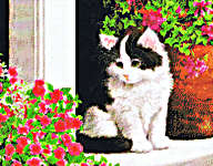 Click for more details of Kitty on Porch (cross-stitch pattern) by Kustom Krafts