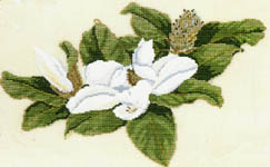 Click for more details of Magnolia (cross stitch) by Barbara & Cheryl