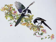 Click for more details of Magpies & Honeysuckle (cross stitch) by Thea Gouverneur
