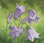 Click for more details of Mini Harebell (cross-stitch kit) by John Clayton