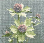 Click for more details of Mini Sea Holly (cross-stitch kit) by John Clayton