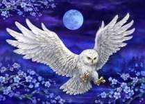 Click for more details of Moonlight Owl (tapestry) by Grafitec