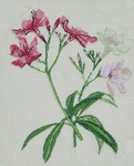 Click for more details of Oleander (cross-stitch kit) by Anette Eriksson