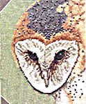 Click for more details of Owls (cross stitch) by Pegasus
