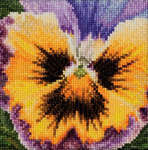 Click for more details of Pansy - with a Yellow Face (cross stitch) by Thea Gouverneur