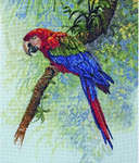 Click for more details of Parrot (cross-stitch kit) by maia