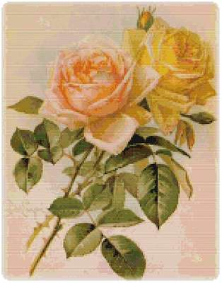 Click for more details of Peach Roses (cross-stitch pattern) by The Golden Hoop