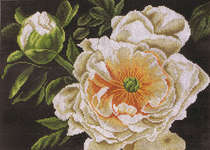 Click for more details of Peony - Lady of the Evening (cross-stitch kit) by Lanarte
