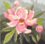 Click for more details of Peony (long-stitch) by Rose Swalwell