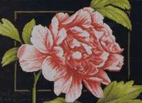 Click for more details of Pink Peony (cross-stitch) by Lanarte