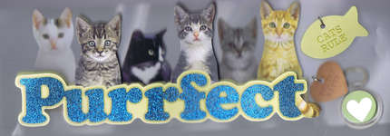 Click for more details of Purrfect 3D Title (embellishments) by Paper House Productions