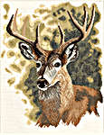 Click for more details of Red Deer (cross-stitch kit) by Lanarte