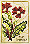 Click for more details of Red Primrose and Hepatica (cross-stitch) by Stoney Creek