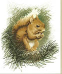 Click for more details of Red Squirrel (cross-stitch kit) by John Stubbs