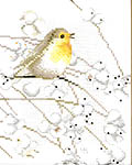 Robin - cross-stitch kit by Marjolein Bastin