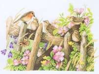 Click for more details of Robins (cross-stitch kit) by Marjolein Bastin