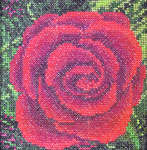 Click for more details of Rose (cross stitch) by Cross Eyed Kat