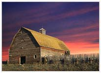 Click for more details of Ruby`s Barn (photograph) by Margaret Elliot