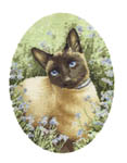 Click for more details of Siamese Cat (cross-stitch pattern) by John Stubbs
