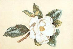 Click for more details of Southern Magnolia (cross-stitch pattern) by Janet Powers