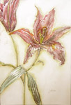 Click for more details of Summer (watercolour) by Julie Peden